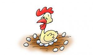 ביצה או תרנגולת